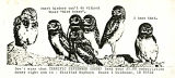 1991, June, bird notes: newsletter of the Canyon Birders, Lewiston, Idaho and Clarkston, Washington