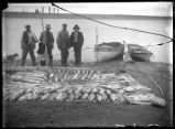 139 salmon and one sturgeon on the Columbia Oct. 1908