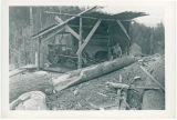 Louis Skinner sawmill, engine under shelter, Cowlitz County, Washington, 1951
