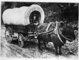 Catalo with covered wagon