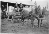 Miners with mules, Roslyn, Washington, circa 1900-1909