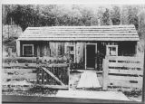 Unidentified cabin, Kittitas County foothills, circa 1910-1919