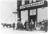Farrell's harness & saddles