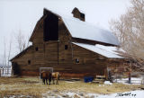 Winter stock barn