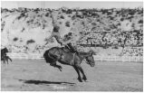 Unidentified rider thrown from his saddle, bronc riding at the Ellensburg Rodeo, 1920s