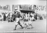 """Ma"" Dunning's pet sheep on parade"