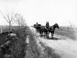Orchard Tracts, Walnut Drive, 1911 [Grandview, WA]