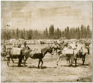 Glenwood Rodeo with pack string, Klickitat County, Washington, circa 1941-1961