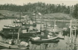 Fishing boats by Hidden Inlet Cannery, Richardson