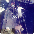 Rolling the catch into the hold, Lummi Island, Washington, 1975