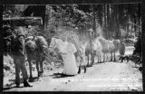 Sisson's Pack Train, Clallam county, Washington