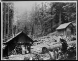 Olympic Hot Spring Cabins, Clallam county, Washington 2 of 2