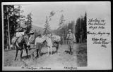 Pack Horses Elwha River, Clallam county, Washington 1909