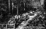 Stanley Steamers in Olympic Forest, Clallam county, Washington, 1 of 2