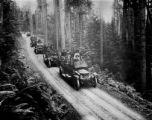 Stanley Steamers in Olympic Forest, Clallam county, Washington, 2 of 2