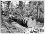 Dragsaw operation at Goodyear Logging Co. operation, Clallam county, Washington