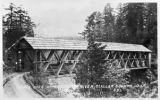 Upper Elwha bridge, Clallam county, Washington 10 of 14
