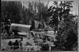 Lower Elwha bridge, Clallam county, Washington 2 of 5