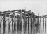 Fish Trap at West Beach 1915