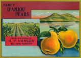 Fancy D'Anjou Pears fruit box label copy