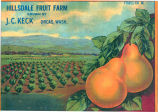 Hillsdade Fruit Farm fruit box label copy