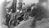 Wagon trip up Mt. Constitution, July 1914