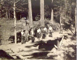 Bridge construction, CCC boys at Camp Moran