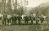 Prospectors to Gypsy Copper Camp