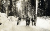 Logging sleigh at Grouse Creek