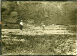 Chard School tennis court, 1915?-1920?