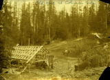 Old sawmill at Columbia Center, Stevens Ridge, Washington, circa 1899