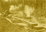 Baldwin sawmill near Columbia Center