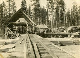 Men working at Norm Beam sawmill on Grouse Flat, Asotin County, Washington, circa 1915