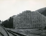 Sacked grain at Donaldson's Warehouse, Pomeroy, Washington, circa 1920