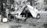 Unidentified camp, Benton County, Washington, circa 1890-1909