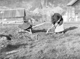 Theresa Panieri in garden, with shovel, April 1938