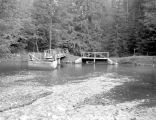 Domeries Pond, June 18, 1950
