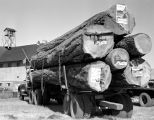 Logging Truck on September 4, 1949