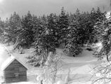 Snow scene from porch of Panieri home, March, 1936