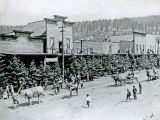 Fourth of July parade, 1901