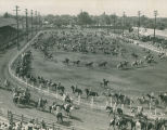 1946 Ellensburg Rodeo, grand entry