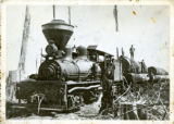 Locomotive with logs