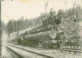 Rail cars with logs