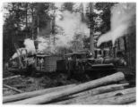 Typical logging scene, with train engine pulling steam donkey