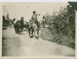 Mule pack train at Twin Buttes