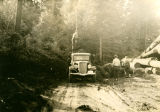 Logging on Burnt Creek, Skamania County, Washington