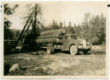 Logging truck filled with logs