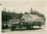 Bud Cluster with a load of hay on a Model A pickup