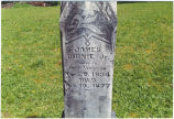Headstone of James Birnie Jr., 1877