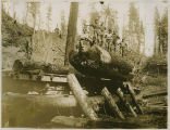Loggers posing on suspended log